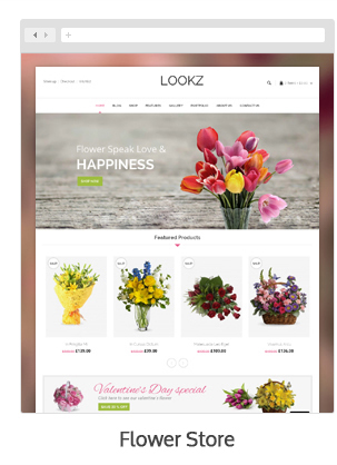 Lookz - Multipurpose WordPress Theme